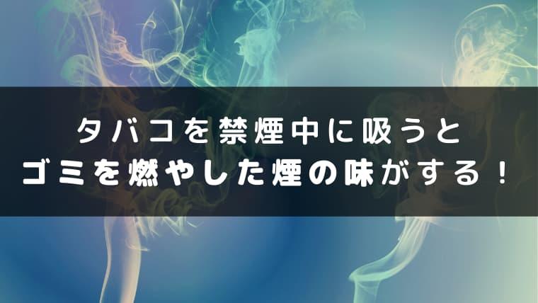 タバコを禁煙中にすうとゴミを燃やした煙の味がする!